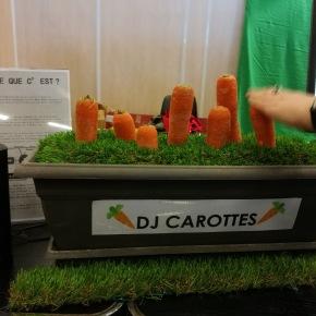 DJ carottes, la jardinièremusicale